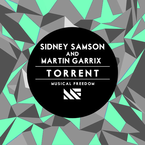 Image result for Sidney Samson feat. Martin Garrix - Torrent