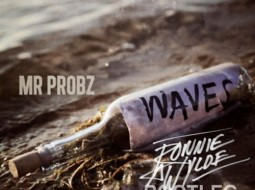 Mr. Probz | Waves | Ronnie and Wylde